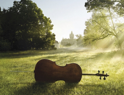 Finding Purpose and Growth as an Adult Amateur Cellist